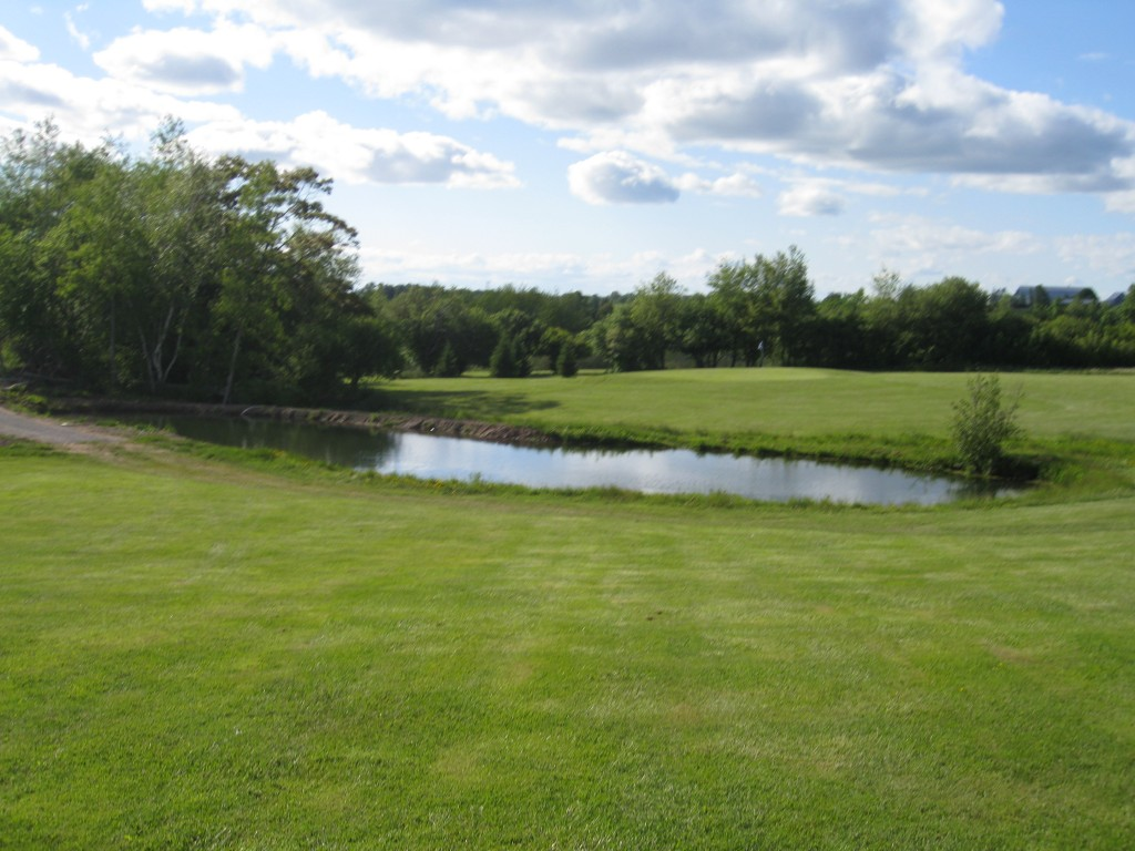 Golf course Improvements larger pond Hole # 8